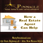 How A Real Estate Agent Can Help